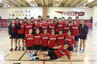 2015 badminton team